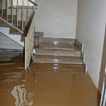Flood Clean Up Services