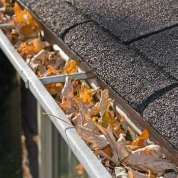 High Level Gutter Cleaning/Inspection